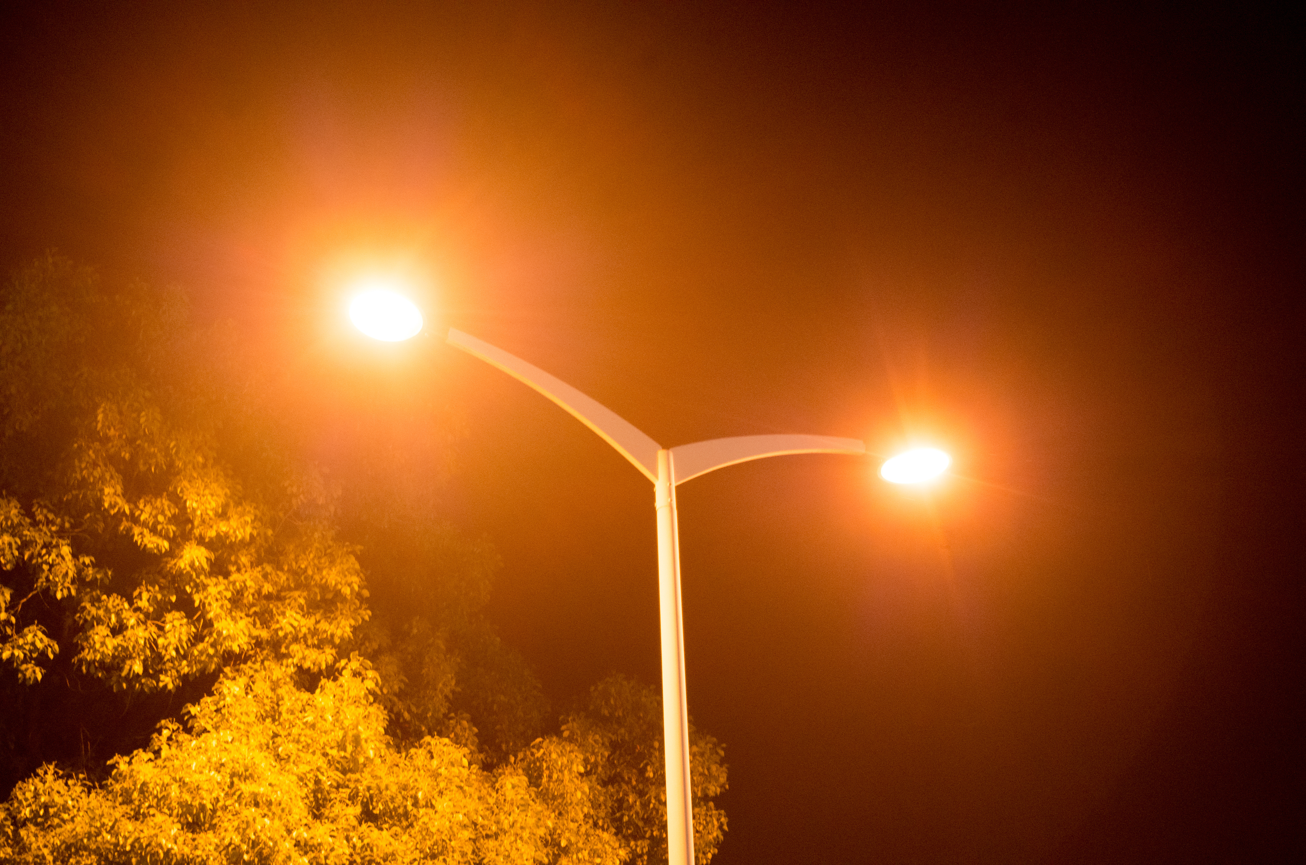 Lovepik_com-500426590-a-warm-yellow-street-lamp-at-night