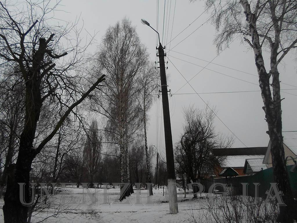 SAM_5620-1